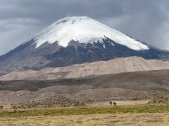 Parinacota_vom_Lauca_Nationalpark.jpg