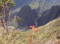 Blick_Machu_Pichu_Putukusi.jpg
